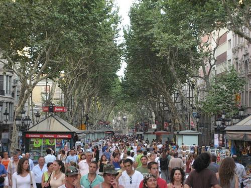 Arboles de la rambla de Barcelona